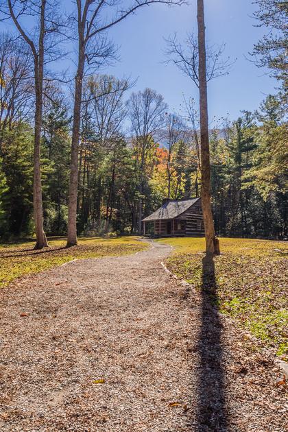 Carter Shield Cabin